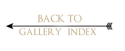 back to gallery index